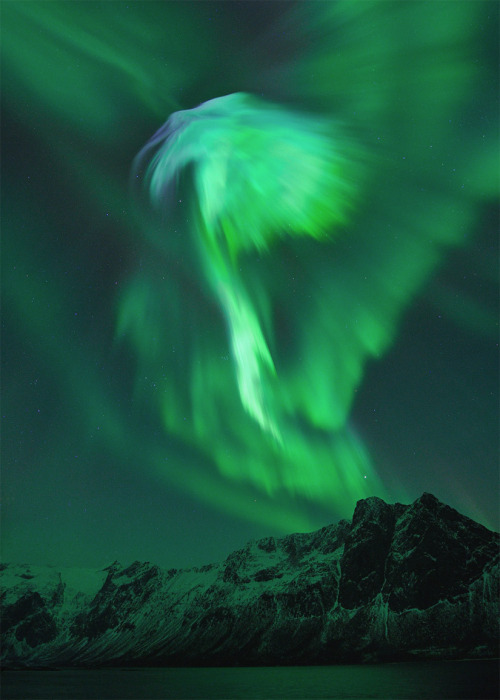 discoverynews:  Spectacular Aurorae Erupt Over Norway Over the weekend, the Earth's magnetic field was struck by a coronal  mass ejection (CME). The CME — a vast bubble of solar plasma that had  erupted from the sun on Jan. 19 — took longer than expected to travel  through interplanetary space, but on Sunday it made contact. keep reading
