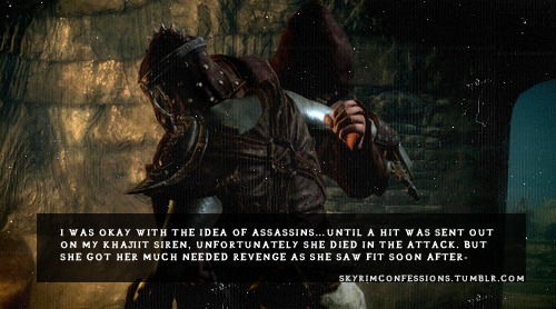 "skyrimconfessions:  ""I was okay with the idea of assassins…Until a hit was sent out on my  Khajiit Siren, unfortunately she died in the attack. But she got her  much needed revenge as she saw fit soon afterwards.""  http://skyrimconfessions.tumblr.com/"