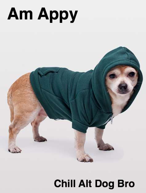 American Apparel creates dog hoodies for authentic alt dogs.