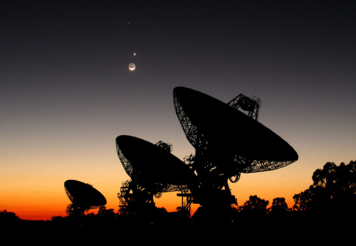 Mercury, Venus, and the Moon over Australian Radio Telescope Array.