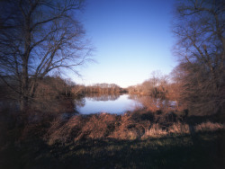 Duck Creek - 4x5 Pinhole ©Rebecca Adair 2012