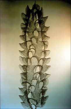 Crocheted Wire Sculpture, 1959 Ruth Asawa