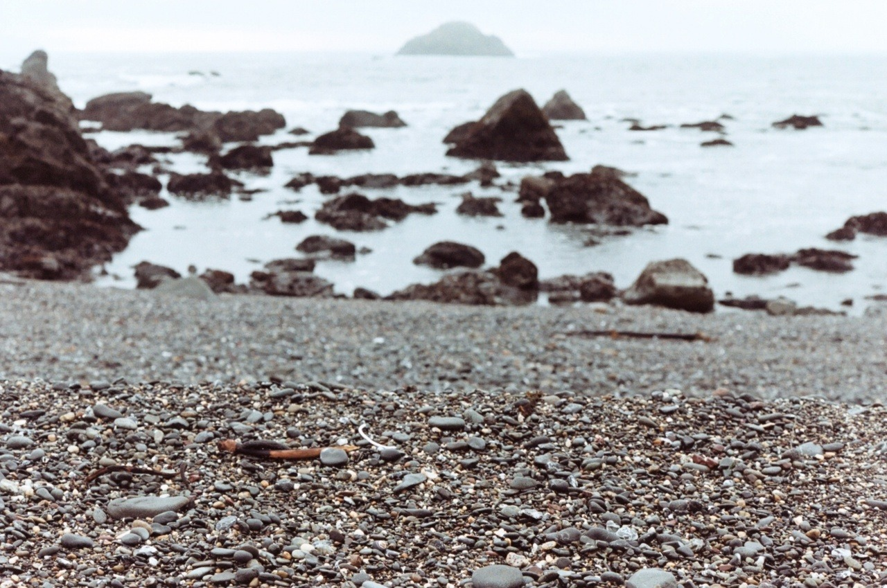 black pebbles Crescent City, CA; Nikon F3HP; Kodak Portra 160NC; Dec 2011