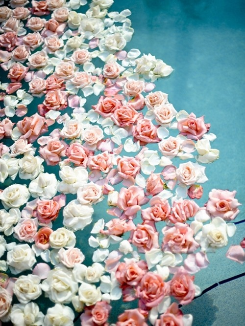 enchantedmemories:  pretty
