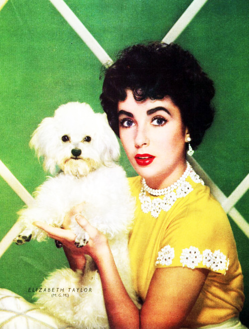 Elizabeth Taylor in Photoplay Magazine 1952