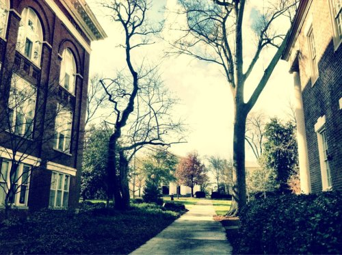 neverbeencommon:  My School is beautiful. :)