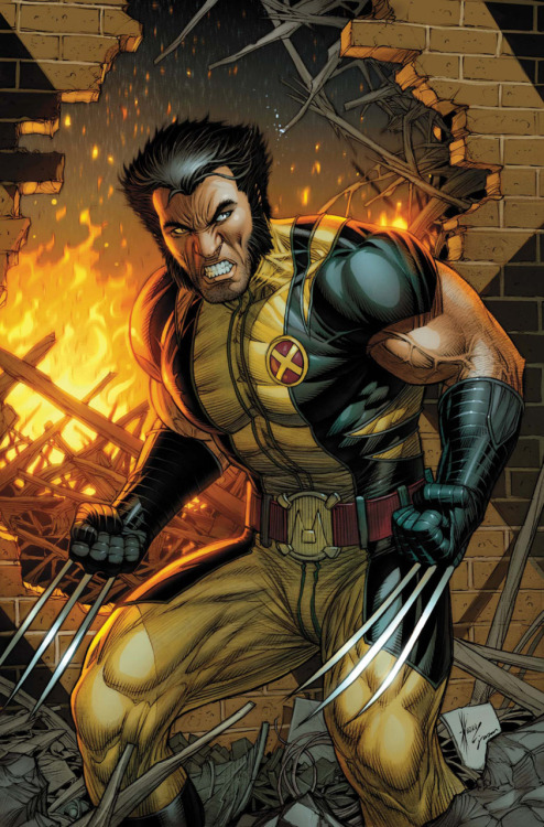Dale Keown's cover for Wolverine #304.