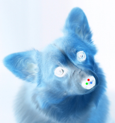 Optical illusion time! Stare at the red dot on Herbie's nose for 30 seconds, then look at a blank sheet of paper and blink your eyes. It might not work for everybody, but when it does, it's pretty sweet.