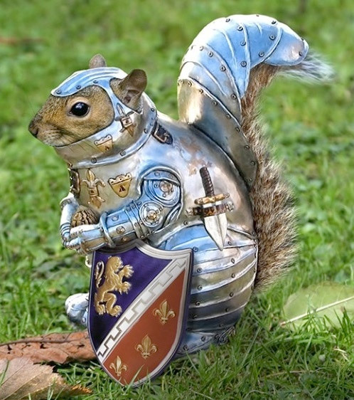This squirrel armor is nuts.