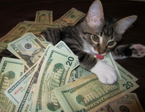 cashcats:  i would go out 2nite but i haven't got a stitch 2 wear