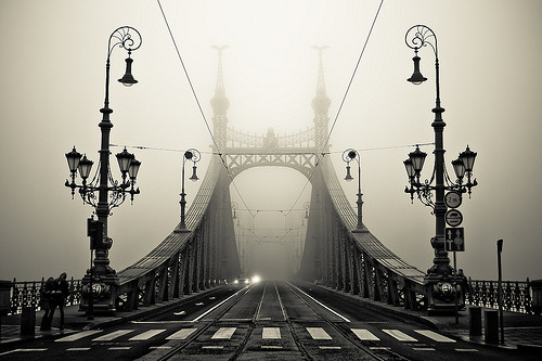 black-wolves:  The Bridge (by arminMarten)