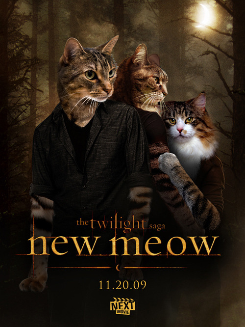 (via 7 Movies Recast With Cats)