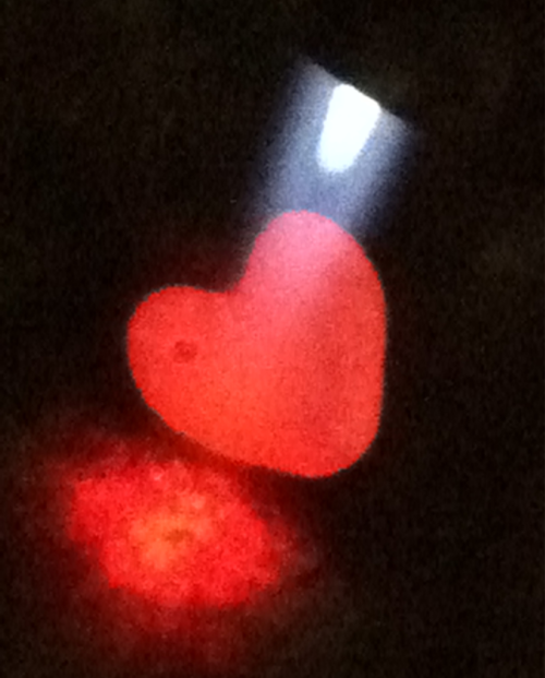 Today 2 Photo: Heart on Fire. 1/24/12. Karen Glosser