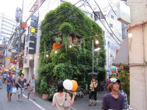 Tokyo, Japan — Deciduous vines provide this building with summer shade, and winter sun; reducing energy demands, while contributing to bird habitat and urban green.
