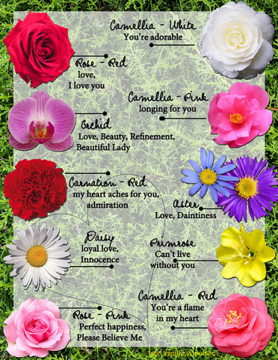 Great for referral and keeping for future use. Personalizing a bouquet/flower. Perfect for Valentine's Day and even Just Because.Meanings of Flowers