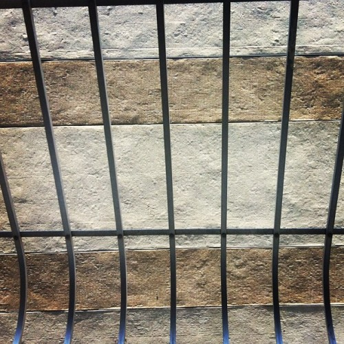 mirtilocantante:  #wall #parede #day #dia #grade (Taken with instagram)