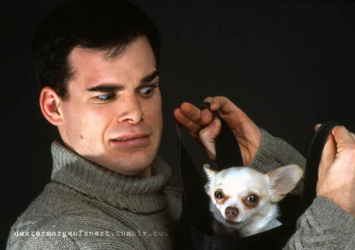 Michael C Hall and chihuahua