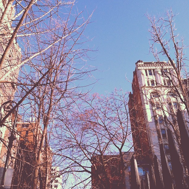 Another lovely day. (Taken with Instagram at Gramercy East)