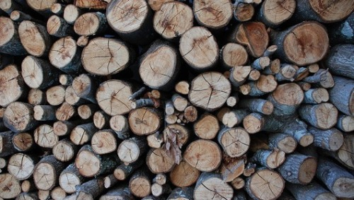 From yule to fuel: Wood burning on the rise in oil-weary householdsWith the cost of heating oil showing no signs of decreasing, many homeowners, particularly in the Northeast, are dusting off their hearths and relying on wood to heat their homes during the winter.
