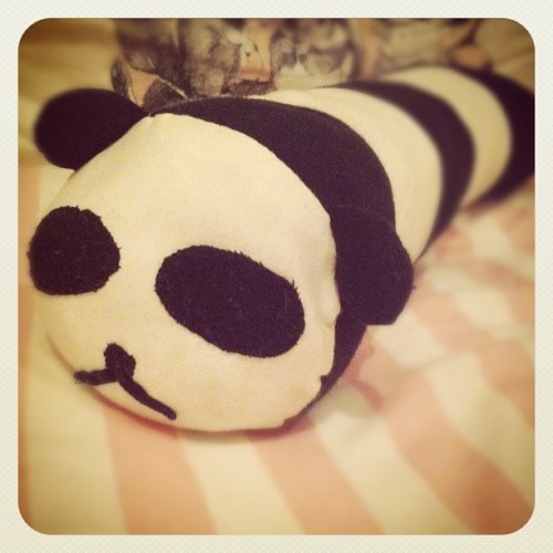 #janphotoaday something i made: a panda pillow (he is a bit battered now) (Taken with instagram)