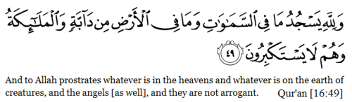 quranicverses:  We have literally NO reason to be arrogant. Allah made you the way you are and gave you everything that you have. So how can you possibly say that you're better than someone? If anything, it should humble you even more; the fact that He blessed you with the qualities that you possess.