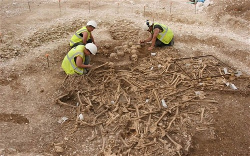 anthrocuriosities:  Skeletons found in Dorset mass grave 'were mercenaries'