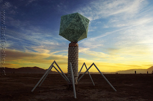 myampgoesto11:  Virus installation at Burning Man 2009