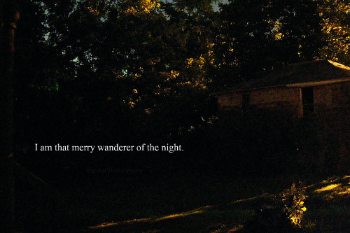 A Midsummer Night's Dream, Act 2, scene i(original photograph by ShutterSparks)