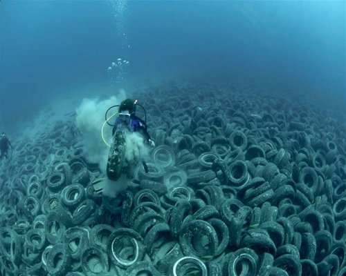 "reformyourself:  ""Ninety percent of all rubbish floating in the world's oceans is plastic. In 2006, UN environment programs estimated that every square mile of ocean contained at least 46,000 pieces of floating plastic. Floating in the surface layer are plastic products, tons of drift nets, plastic bags, packing straps and common household items like soap, televisions, automobile tires and deodorant bottles. One suspected spill of plastic bags was measured to have covered 10 miles of ocean. Beneath the waves, vast coral reefs and colonies, some thousands of years old, house more than 25 percent of all marine fish species. These unique and crucial habitats form an integral part of the oceans systems and yet they too are struggling to manage to cope with the impacts of industries such as tourism, reef fish trades and the taking of coral, which supplies those who think that this coral would look more attractive as home décor or jewelry and consequently support a significant trade in its collection and processing around the world.""  Taking care of the planet is as important - if not more important - than taking care of our bodies.  If you are blogging about health, nutrition, and fitness because you enjoy the taste of locally-grown, fresh vegetables and grass-fed beef, the health of our planet concerns you.  If you love to run because you enjoy the feel of the air and sun on your skin, you should have an appreciation for nature, because we're all a part of it.  If you spend more than a few hours in front of your computer screen every day, I suggest that you make it a goal in 2012 to get outside and learn something new about the nearest wildlife reserve or national park.  If you live near the ocean, go rent some snorkeling equipment or flip over some rocks at the beach and you'll see a world that exists entirely separate from you, a world that supports creatures of all kinds and sizes, and these ecosystems require our responsibility as co-inhabitants of earth to thrive.  Buy less, use less, and appreciate the small things in life.   There's no excuse for miles of tires to found be on the ocean floor.  Drive less, buy a bike, do whatever you can to reduce your impact on the our earth's bounty.  It starts with you - reform yourself.  Read MORE."