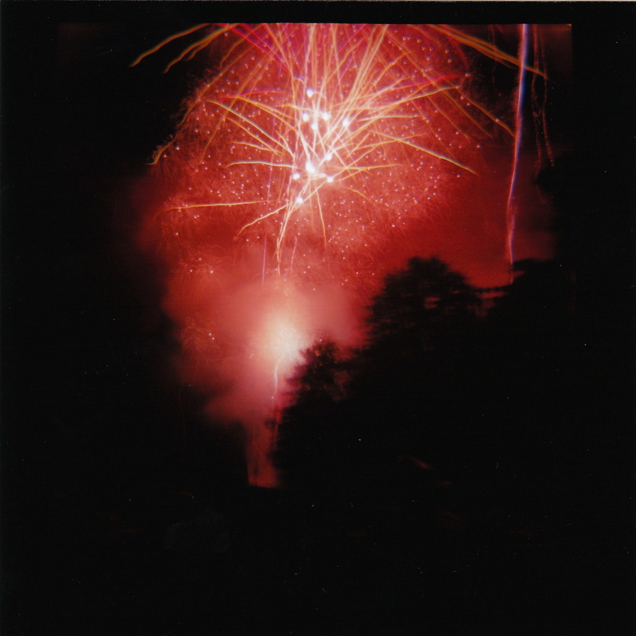 Fourth of July, 2011. Taken with a Diana F+, Kodak 120 color film.