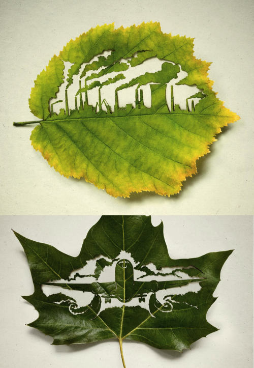 Every leaf traps CO2 - Leagas Delaney for Plant for the planet  (via szymon)