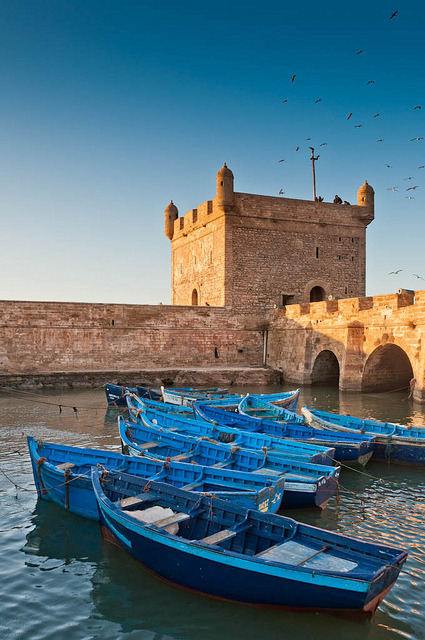 travelingcolors:  Essaouira | Morocco (by tom_ruaat)