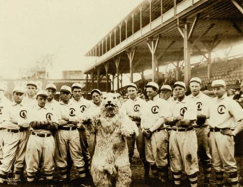 via @uniformcritic…      The 1908 Chicago Cubs and their mascot: tinyurl.com/7kandvc (Full Size)