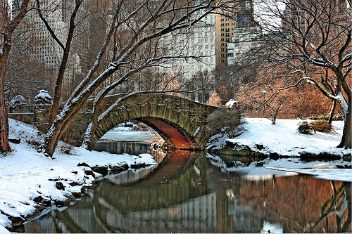 Central Park Bridge in New York City Winter (by Cherry Bomb Photography)