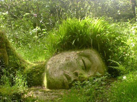 cosmicteacup:  demdreads: The Lost Gardens of Heligan, UK.