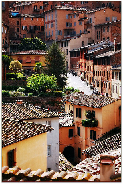 | ♕ |  Sunny street in Siena, Tuscany  | by © Noelle Smith