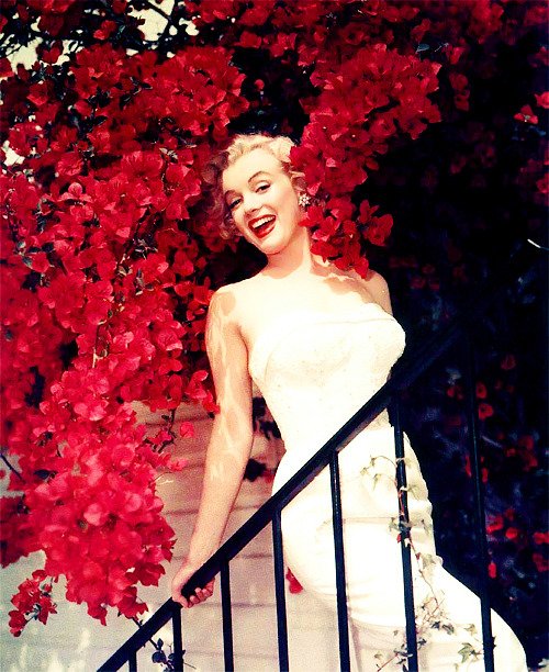 marilynfacts:  Marilyn Monroe. Rare photograph by Don Ornitz