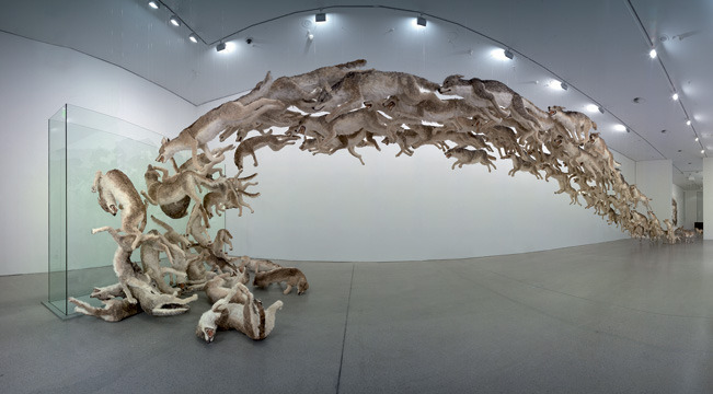 magnolius:  Head On installation by the renowned Cai Guo-Qiang , consisting of 99 life-sized replicas of wolves.  With few wolves scattered in the front gallery, all ninety-nine wolves run, gallop, and jump toward the far end of the exhibition hall, where a wall stands. The bravery of the wolves is met head on by the unyielding wall. As the leading wolves go down, many more follow with force and determination. As those in the front fall and pile up, those behind take up their positions.