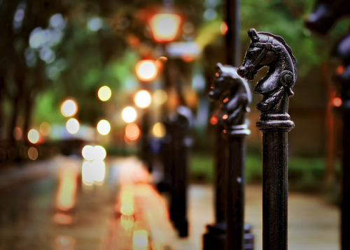 Port Orleans Hitching Posts at Dusk by Express Monorail on Flickr.