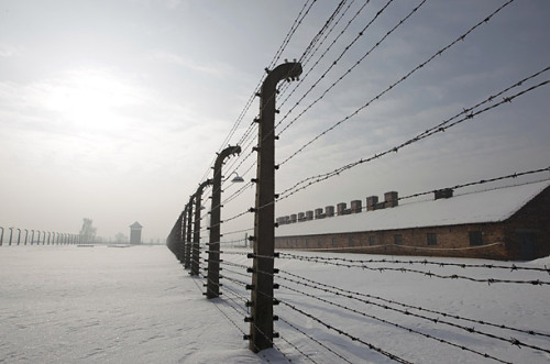 "lostsplendor:  ""The barbed wire fences serve as a reminder of the horrors of the past. There were thought to be around 7,000 survivors in the camp at the time of the liberation in 1945 with only a handful still alive. Israeli Prime Minister Netanyahu honored the victims and those who risked their lives to save Jews from the Nazis. ""We encounter the worst evil in the history of mankind together with the greatest courage in the history of humanity. This is not an easy encounter but it gives us hope and direction for our future.""(via Auschwitz After 65 Years - Photo Essays - TIME)"