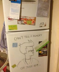 collegehumor:   Refrigerator Fry Meme   Can't tell if joke is funny or defacement of one thing I love.