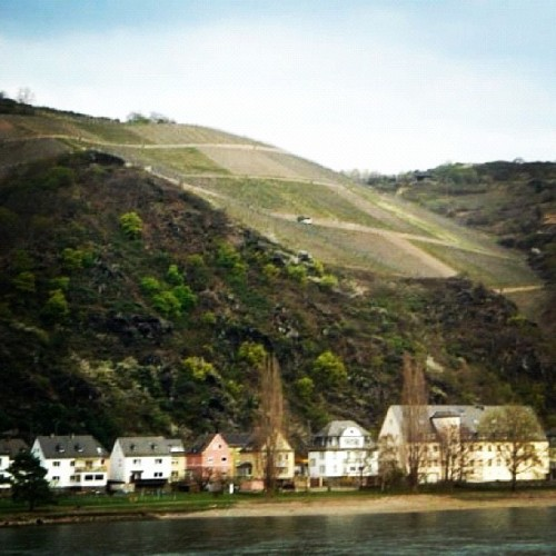 #wanderlust #travel #europe #european #lovely #houses #rhinevalley #germany (Taken with instagram)