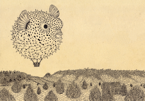 organic traveling #2: fugu hot air ballooning