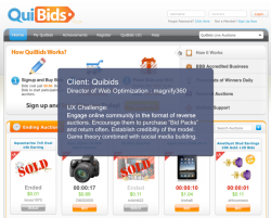 UX approaches for QuiBids while Director of Optimization at magnify360