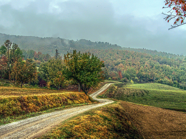 A road to the autumn by lele orpo on Flickr.