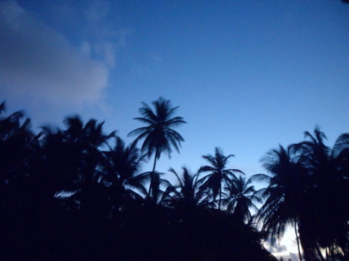 k-auwahi:  omg i was up before sunrise! so beautiful!