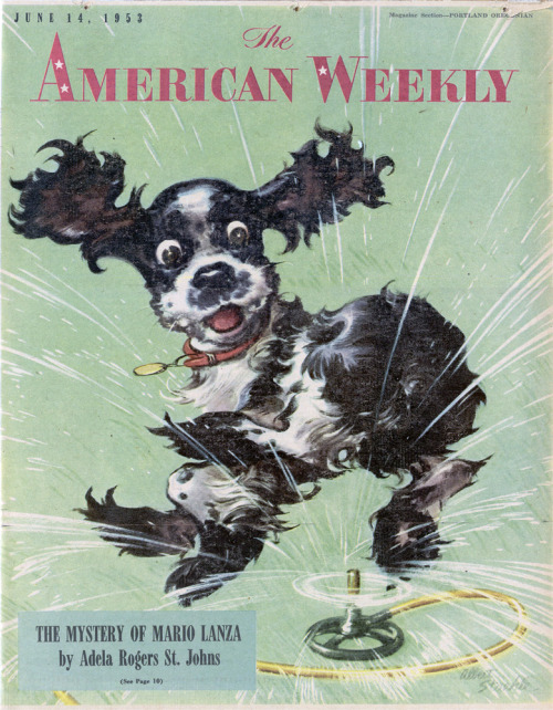 American WeeklyCover by Albert StaehleJune 14, 1953