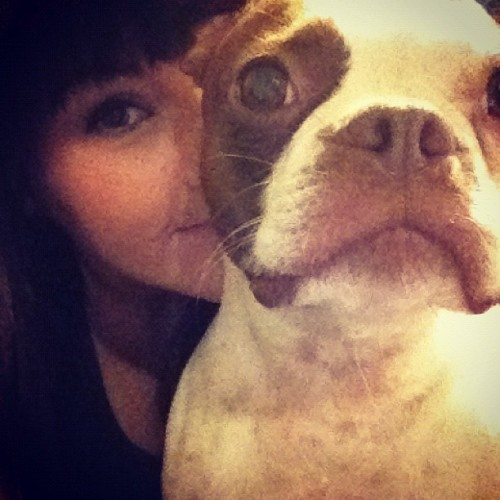 Mean muggin maple 😘🐶  (Taken with instagram)