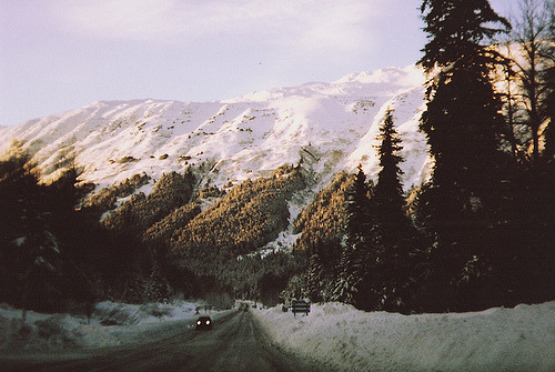 just-breezy:  mountain holga 135. (by The Fairest)