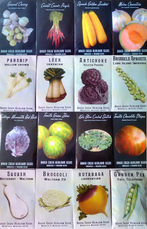 LocalFood.me Seeds